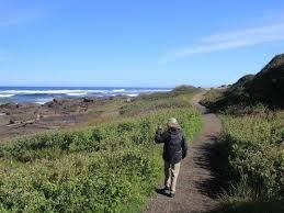 Person Walking 804 Trail by the Ocean